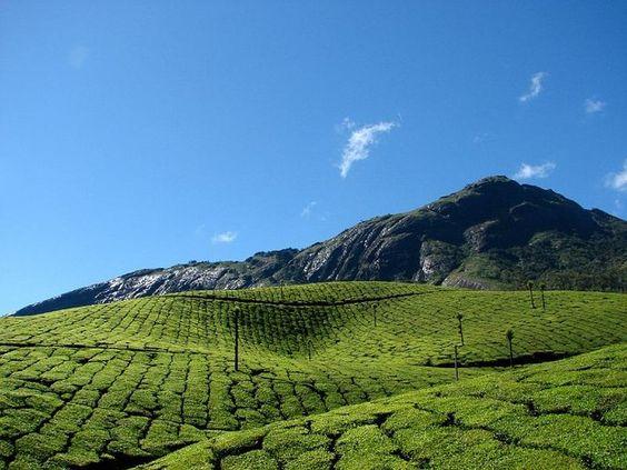 Kerala Le Kerala ou Kérala est un État indien. La langue principale est le malayalam qui fait partie des langues dravidiennes, famille linguistique dominante en Inde du Sud