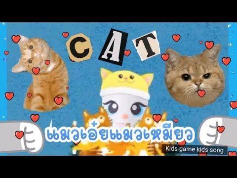 แมวเอ ยแมวเหม ยว โดย My Angela