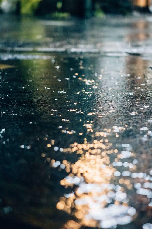 Petrichor rain