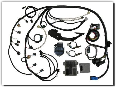 Southern Performance Systems Gen Iv Wire Harness Kits Ls Engine