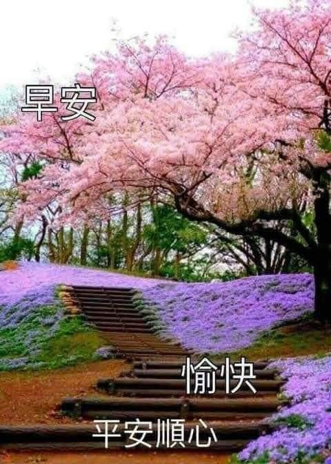 pin by hanson phuah on 早安 风景in 2021 good morning greetings morning greeting golf courses