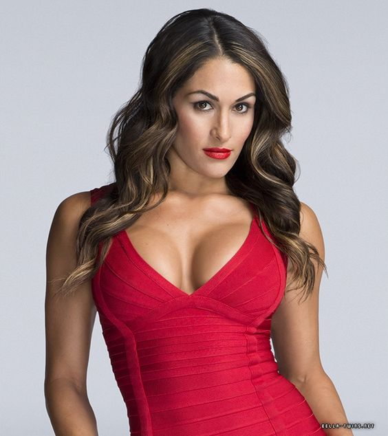 Nikki bella wwe and wwe divas on pinterest - Diva nikki bella ...