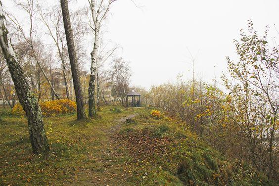 Беседка с видом на море в парке Сосновый бор в Пионерском. Фото: Evgenia Shveda