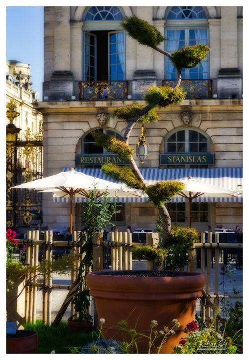 Ville De Nancy Jardin Ephemere 2018 Avec Images Ville De