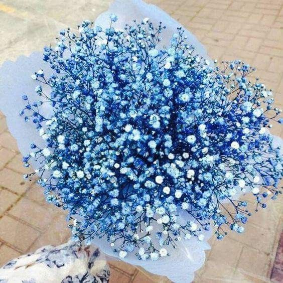 Insta And Pinterest Amymckeown5 Blue Flower Arrangements Birthday Flowers Arrangements Flower Arrangements