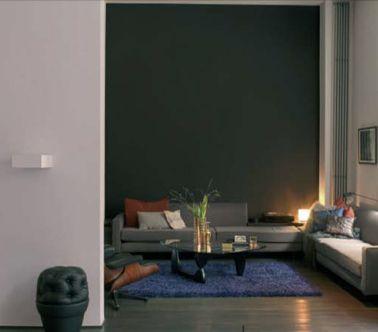 deco salon mur taupe et tapis bleu canard - Cuisine Bleu Et Taupe