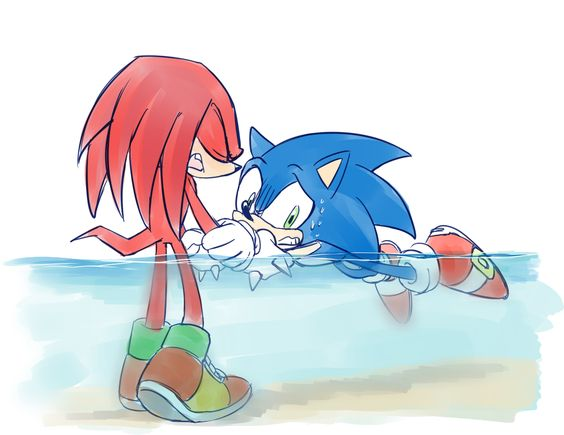 "Awws look at poor Sonic... and Knuckles is over here probably thinking ""this is so sad"" <--- quite right."