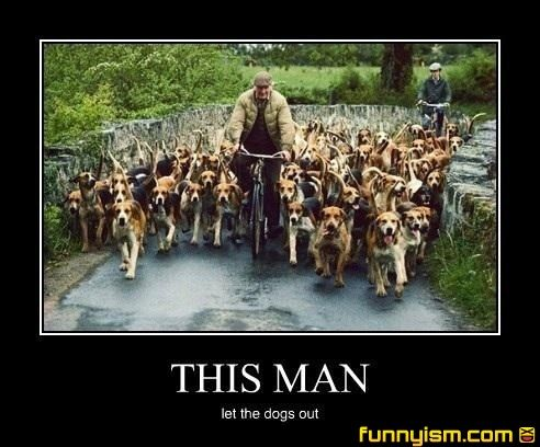 man bike dogs   Demotivational Pics   Funnyism Funny Pictures