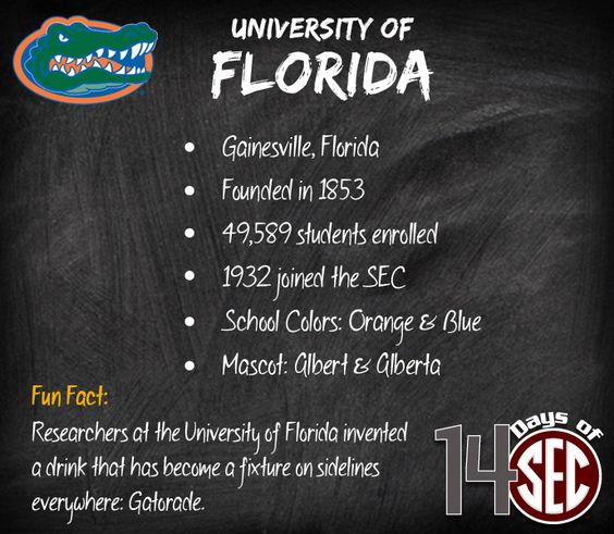 The fun facts about the state of florida