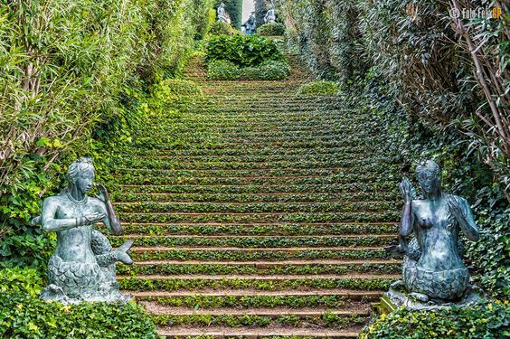 Ivy stairs in Santa Clotilde Gardens, Lloret de Mar, Costa Brava, Catalonia, Spain ✯ ωнιмѕу ѕαη∂у