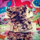 Blissful Berry Oat Bars - A Vegan Blogging Extravaganza at The Flaming Vegan
