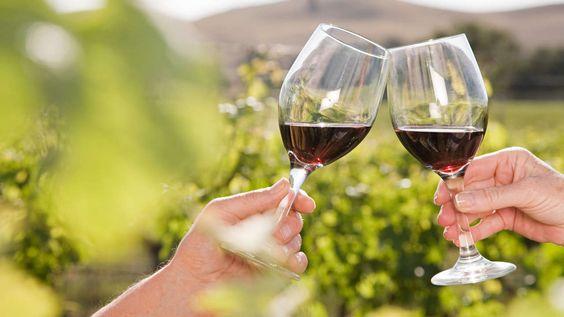 ITALIENISCHER ROTWEIN Aglianico-Weine sind wieder im Kommen