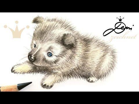 Youtube Hund Malen Hund Zeichnen Hund Zeichnungen