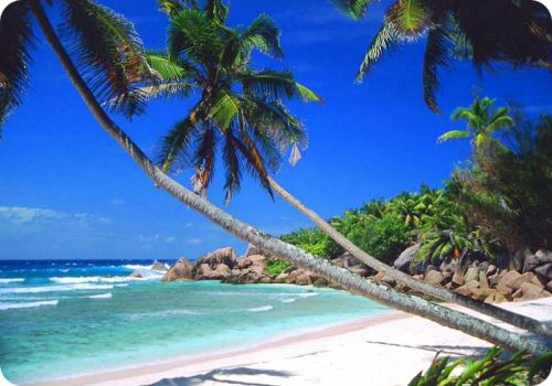 Seychelles Islands in the Indian Ocean. (The capital is Victoria. The beach shown here is Anse-Coco.):