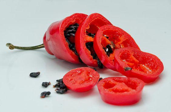 Il peperoncino Rocoto ha un aspetto delizioso che ricorda una mela ed il suo sapore è molto piccante!