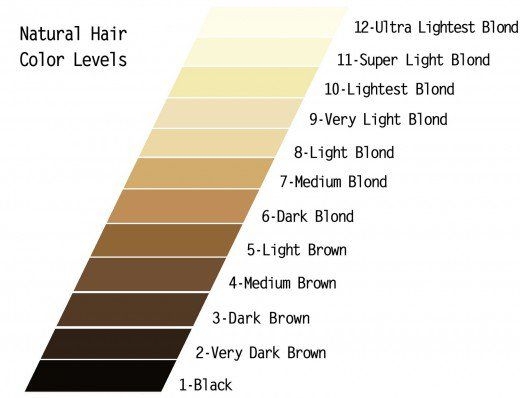 Diy Hair How To Use Wella Color Charm Toner Hair Color Chart Wella Color Charm Toner Hair Levels