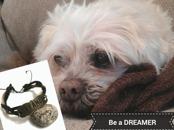 Dreamer Leather Bracelet