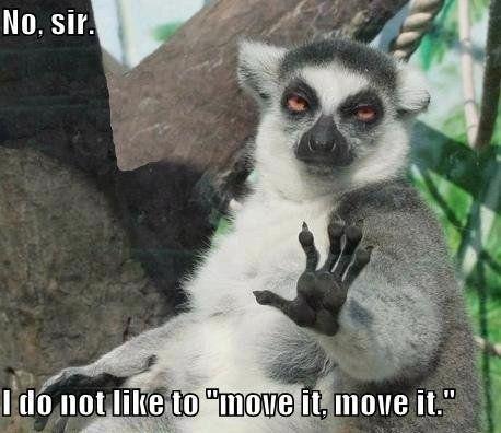 Haha. Love Madagascar and King Julius