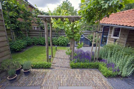 Mooie strakke indeling van een klein tuin tuin pinterest achtertuinen paden en tuin - Wijnstokken pergola ...