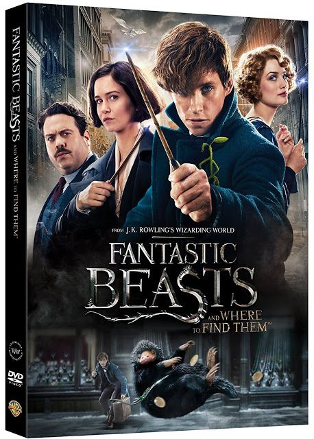 Fantastic Beasts and Where to Find Them DVD release!!! We waited for the movie & then the DVD/Blu-ray...: