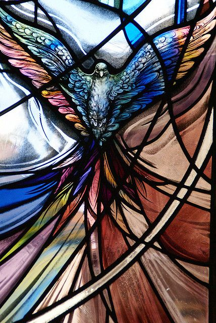 Trinity stained glass - dove.
