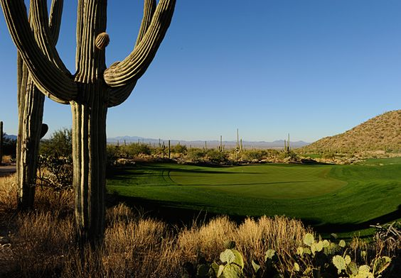 PGA Tour Player's 10 Worst Courses: #2 Ritz-Carlton GC - Dove Mountain