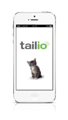 Gatos: 7 gadgets para 7 vidas  -  High-Tech Girl        Gatos. Tailio, monitoriza a saúde do animal através da caixa de areia