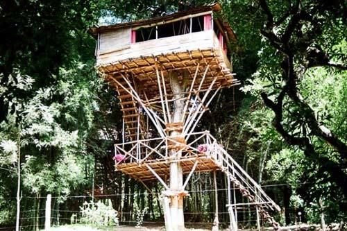5 Strangest Places to Stay. Photo by Safari Land Farm and Guesthouse
