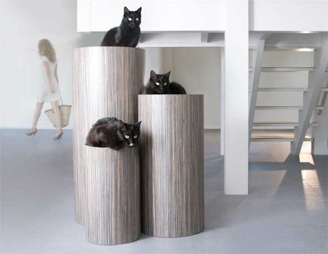 modern-cat-furniture-sltto | Cat Furniturrrrr | Pinterest | Modern cat  furniture, Cat furniture and Cat perch
