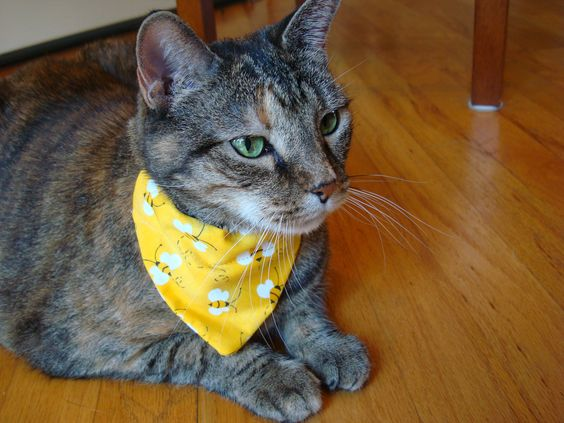 Cat bandana handkerchief - Bees neckerchief - Cat scarf via Etsy.