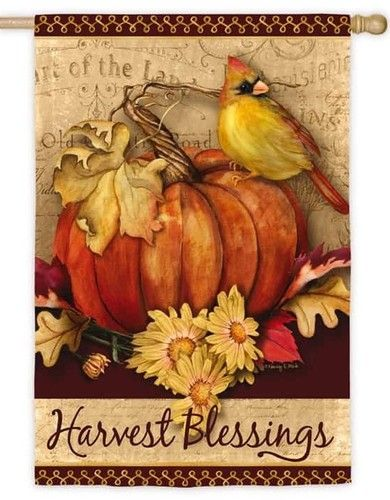 Harvest Blessings Pumpkin Suede Reflections House Flag