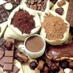 Los antioxidantes del cacao aumentan la función cerebral