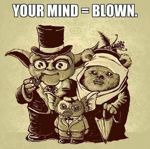 Daddy Yoda + Momma Ewok = Baby Gremlin, HA! This is how a Star Wars Family is created.