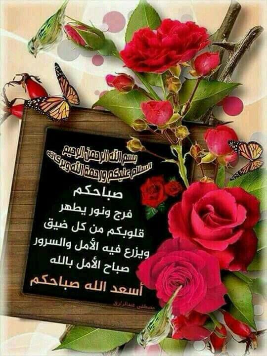 Pin By وردة الياسمين On صباح الخير Good Morning Greetings Good Morning Wishes Morning Greeting