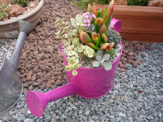 Ha kevés a helyünk, ha örök újítók vagyunk, ha még több virágot szeretnénk, ha nincs kertünk, akkor kertészkedjünk miniben. Milyen konténerbe ültessünk? Válasszunk megfelelő, vízelvezető nyílással ellátott konténert. Ha nincs ilyen, az edényeket mindenképp lássuk el drénnyílással. Mérete olyan legyen, hogy a talajt megtartsa, de a vizet kiengedje. Bár sok mutatós edény vásárolható (terrakotta, mázas, fa), nem szükséges feltétlenül vásárolnunk. Választhatunk az otthoni limlomok közül is…