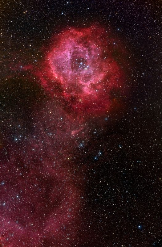 "Rosette Nebula (NGC 2237). (Image: Adam Block & Tim Puckett) The red color is hydrogen gas energized by a hot star - it's an emission nebula. The ""stem"" is formed by a trail of the same glowing hydrogen gas.  The nebula is 5000 light years away in the constellation Monoceros.Mona Evans ""Monoceros the Unicorn"" http://www.bellaonline.com/articles/art182324.asp"