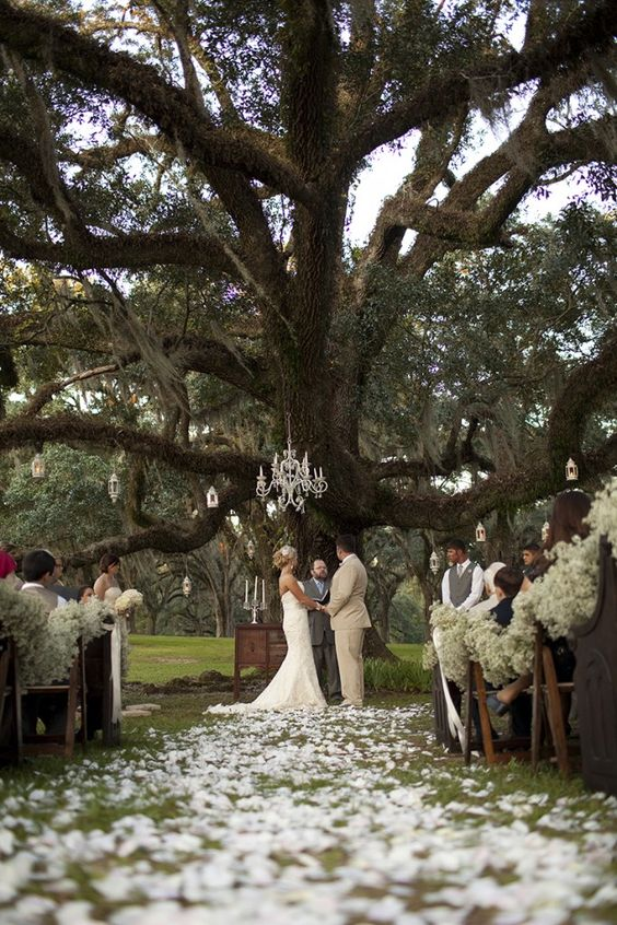 Vintage Plantation Wedding. I've always loved the idea of getting married in front of live oaks. <3