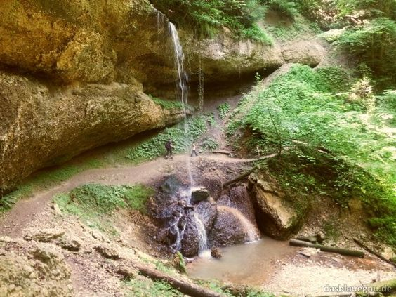 Walderlebnispfad Möggers - der beste Walderlebnispfad EVER. Mit Tarzanseilen über den Bach statt Skywalk mit Fahrstuhl.
