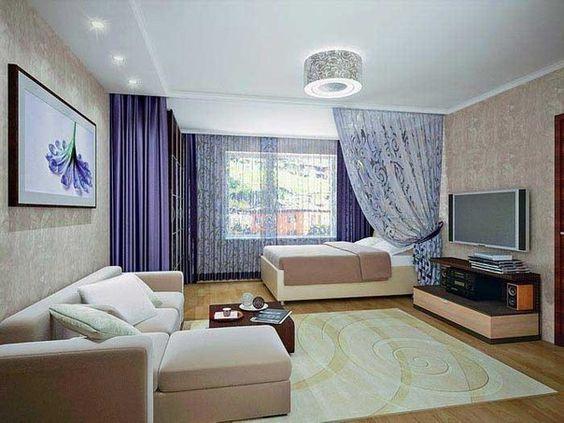 Zoning Livingroom Bedroom Small Mini Interior