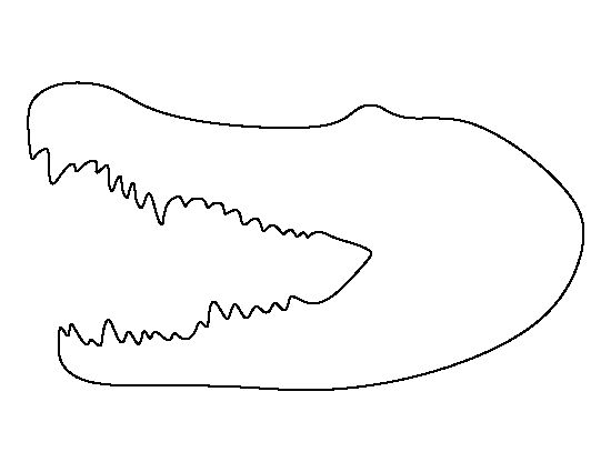 top 10 free printable crocodile coloring pages online animais