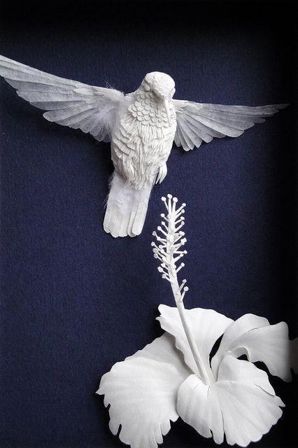 humming bird & hibiscus flower ~ Paper sculptures by Calvin Nicholls
