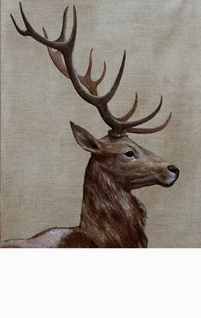 Cerf majestueux