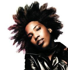 http://researchanalyst.hubpages.com/hub/Black-Female-Singers-with-Natural-Hair
