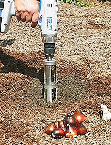 Bulb Bopper A Favorite Gardening Tool Good For Handicap And Older Gardeners Gardening Hints