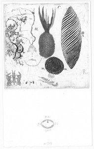 Sin título No. 251. 2008. Aguafuerte. P/A. 17 x 10 cm