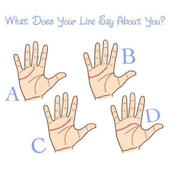 """What does your heart line say about you? Read below to find out & comment your """"letter"""" below! The heart line is a line read in palmistry, it is the line that's below the index finger or middle finger (depending on how long yours is) and extends to the edge of your palm underneath your little finger. Match your heart line with the one that most closely matches yours on the image.... A: If your heart line begins below your middle finger, you're more of a leader. You're ambitious, independent, i:"""
