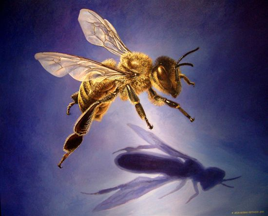 Image result for painting of honey bees