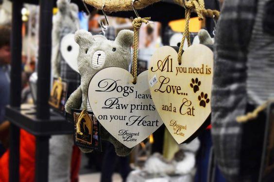 http://calistas-traum.de/heimtiermesse-dresden-all-you-need-is-love-and-a-cat/