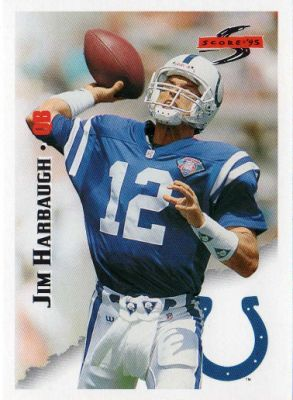 Image result for picture of jim harbaugh in afc championship with colts