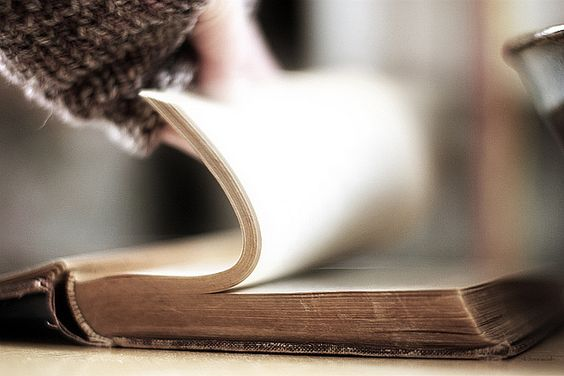 flipping through the pages of a favorite book.